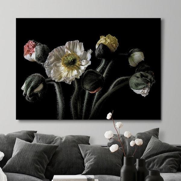 Poppy Bouquet Canvas