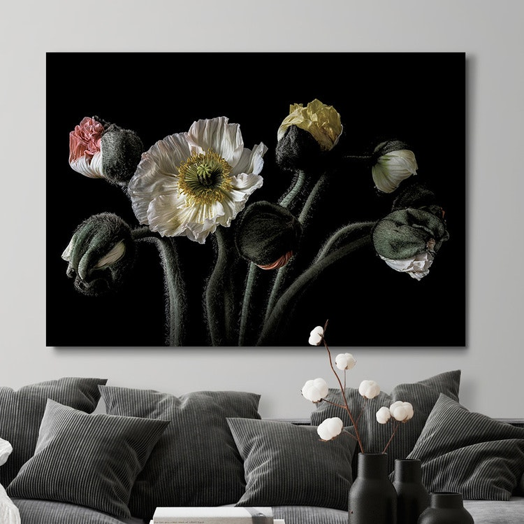 Poppy Bouquet Canvas