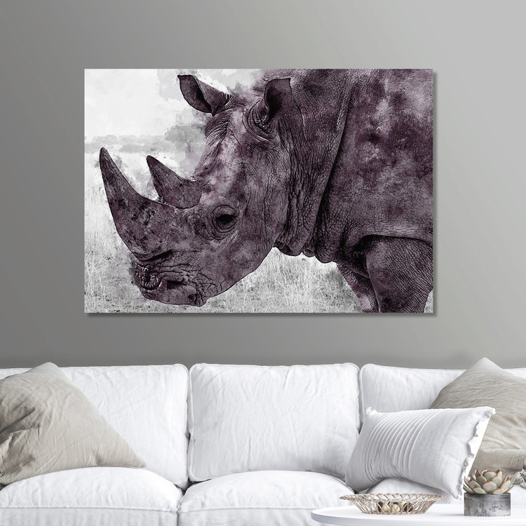 Rhinoceros Paint Canvas