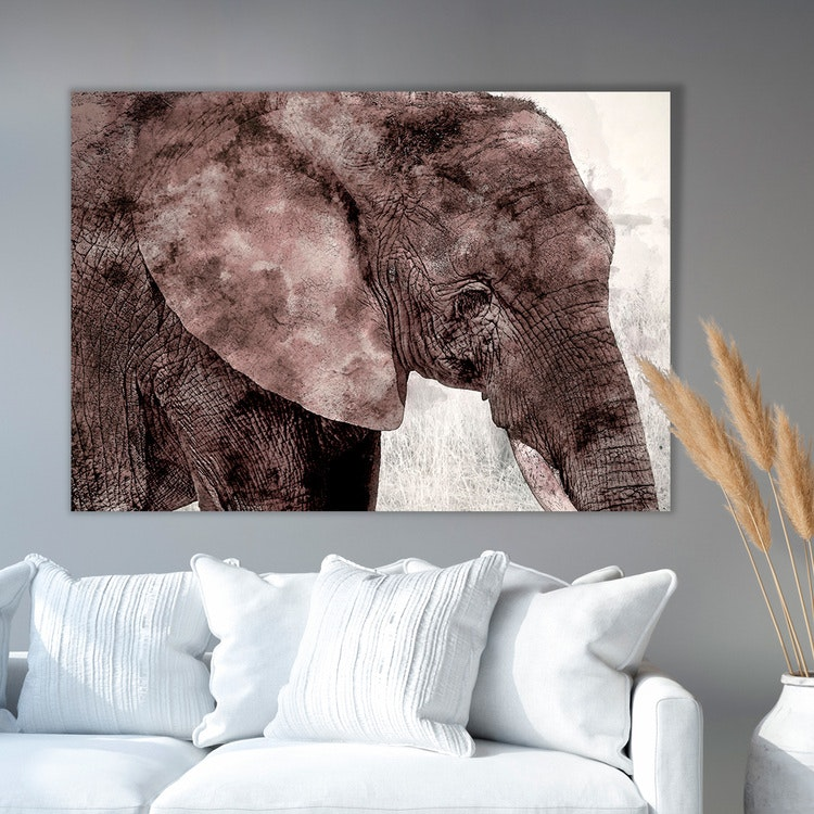 Elephant Paint Canvas