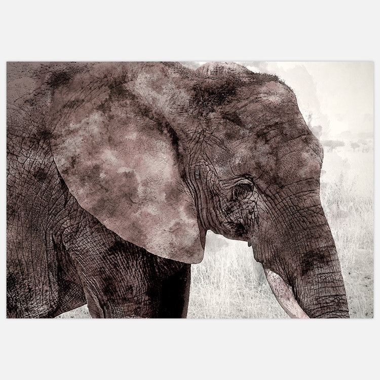 Painted elephant.