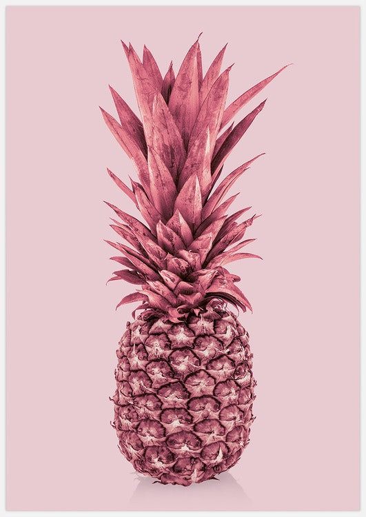 Absolutely Pink Pineapple