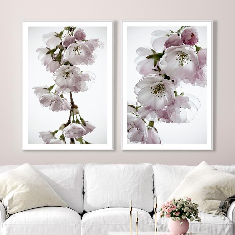 Tavelvägg Cherry Blossom