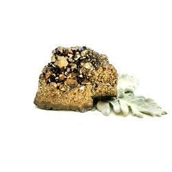 #2 Golden Aura kluster