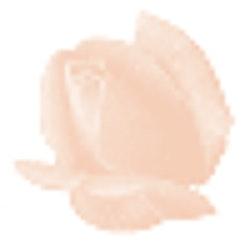 Färgcrème för mycket känslig fet hud