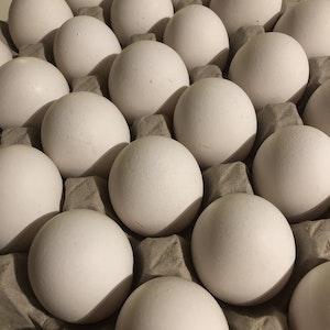 Ägg 30st (KRAV) från Vrånghult i Tranum