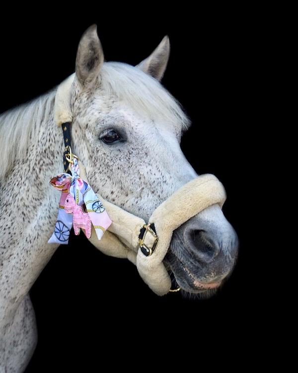 Hästnyckelring | Rosa