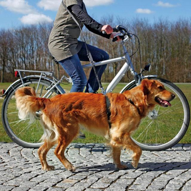 Trixie, cykel- & joggingkoppel, svart