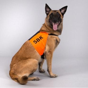 Tjänstetecken, SBK, orange