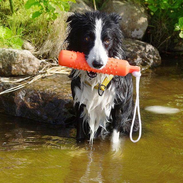 Dogman, dummie i gummi, orange