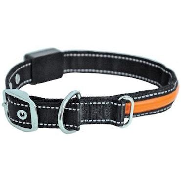 Blinkhalsband, blink/fast sken, orange, 45cm