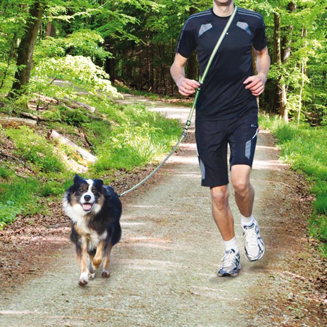Trixie, joggingbälte, grå/lime, 20mm/133-180cm