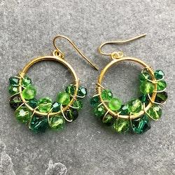 Drottning runda örhängen guld & grön