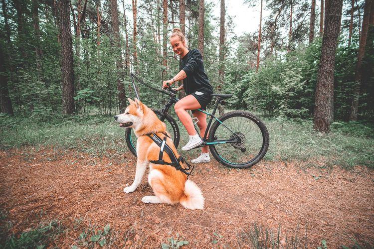 Bike Antenna
