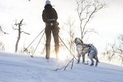 Skidpaket 1 hund [Non-Stop Dogwear]