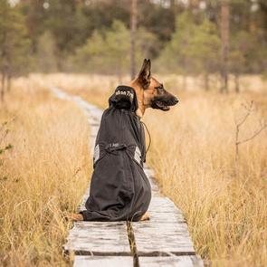 Hundnättäcke [Back on Track]