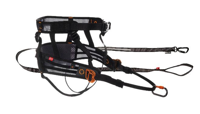 Löppaket Canix Belt (S) + Touring Bungee  2,0m