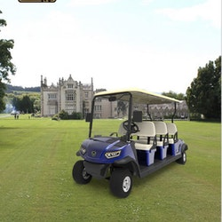Golfbil LEROAD L6, Årsmodell 2021