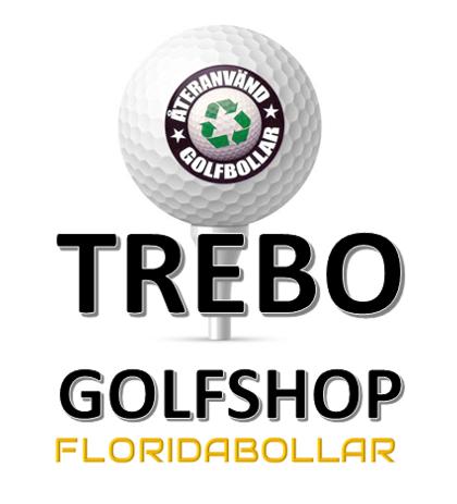 Titleist Pro V1 Floridabollar B-Grade (bra skick) 12-pack