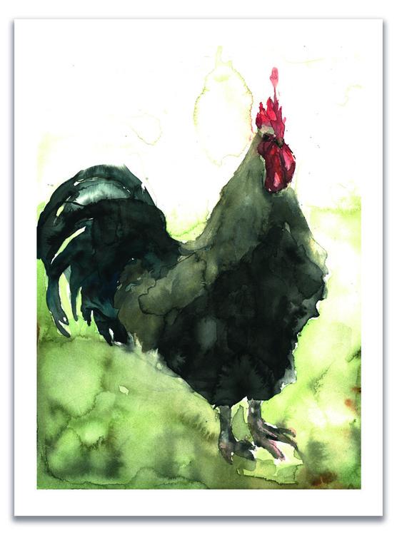 Den svarta tuppen 30x42 – Fine Art Print