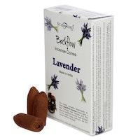 Backflow Lavendel
