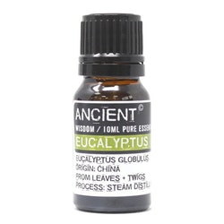 Eucalyptus 10 ml