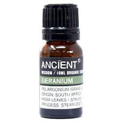 Ekologisk eterisk olja Geranium