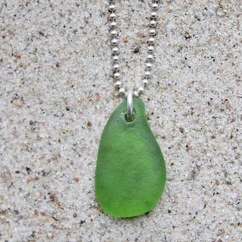 Chlorophyll halsband