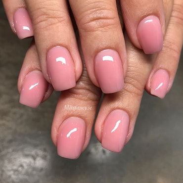 Cover Gel Velvet Rose