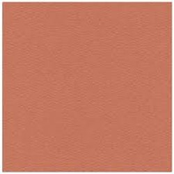Cardstock - 12x12 - brunorange 914 25-p