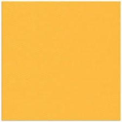 Cardstock - 12x12 - gulorange 915 25-p
