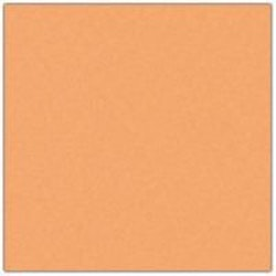 Cardstock - 12x12 - ljusgulorange 937