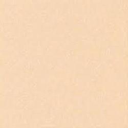 Cardstock - 12x12 - gulbeige 940