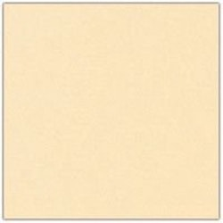 Cardstock - 12x12 - blekgul 943