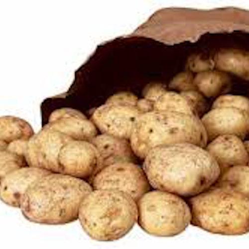 Potatis från Ekenäs 10kg
