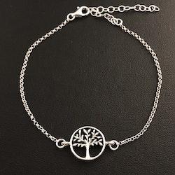 Livets träd - Silverarmband