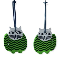 Grönrandiga kattörhängen i plexi och titan