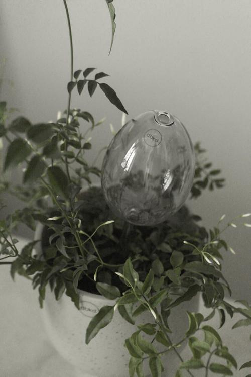 """Waterbubble, """"semestervattnare"""" från DBKD"""