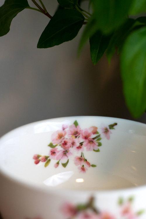 Kopp - Sakura