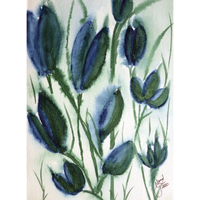 Amazing Tulips - medium
