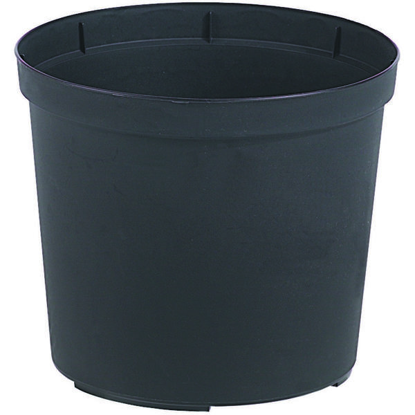 Cultivate planteringskruka 12 cm svart