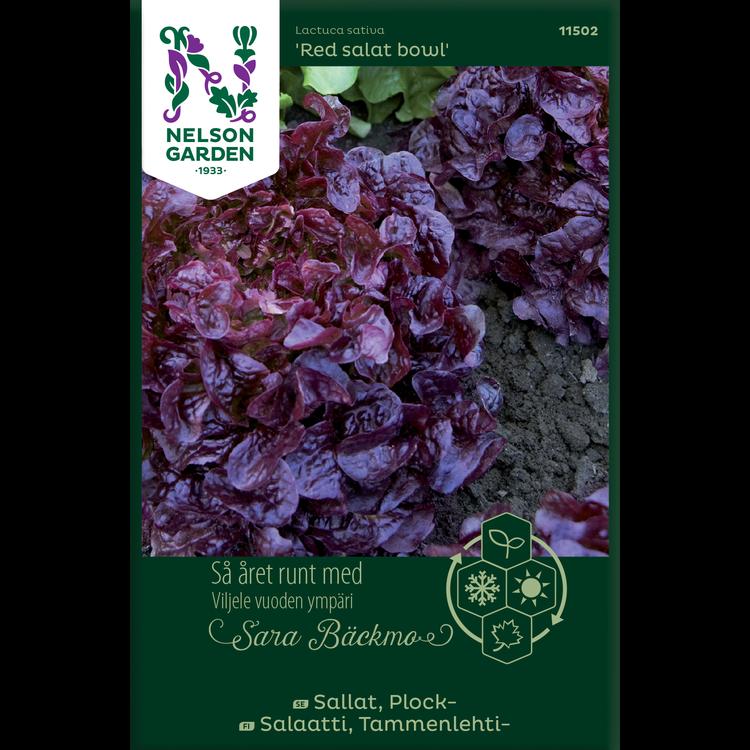 Sallat, Plock-'Red salad bowl'