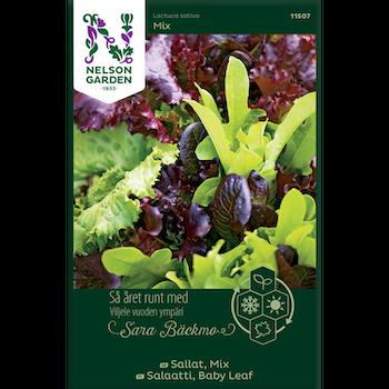 Sallat Baby Leaf mix