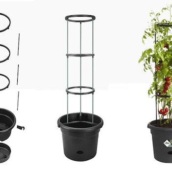 Tomat Torn Själv vattnande odlingskruka