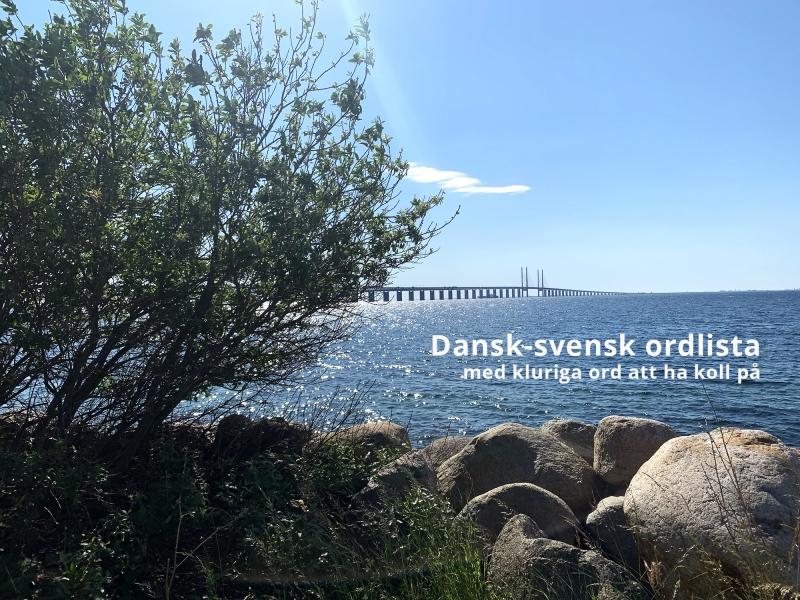 Dansk-svensk ordlista: Kluriga danska ord