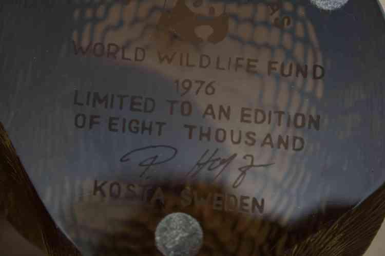 WWF Igelkott - Paul Hoff, Kosta