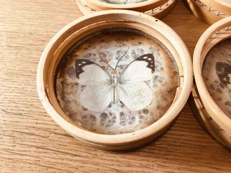 Glas/ flask underlägg i trä/glas med fjärilar