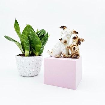 Porslinsfigur - hundar