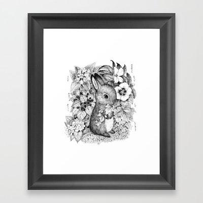 Kort - A hare