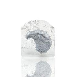 RAW - EAGLE (SILVER)
